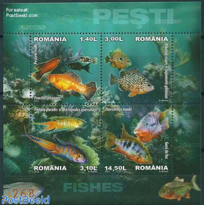 Fish, Special s/s
